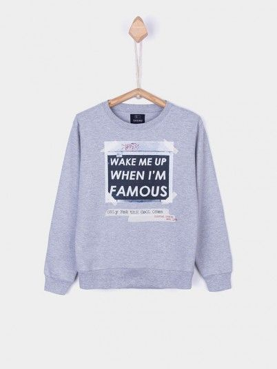 Sweatshirt Boy Grey Tiffosi Kids 10026370